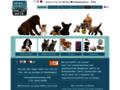 Détails : Dogcatandco