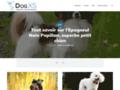 Colliers personnalisables pour chiens et chats