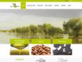 Détails : huile d'olive vierge extra Tunisie
