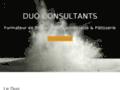 Duo Consultants