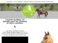 Voir la fiche détaillée : Pension pour chevaux Wavre