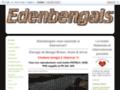 Détails : Chatterie des Edenbengals chaton bengal à toulouse