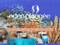 Plong�e Guadeloupe