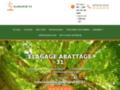 Meilleure entreprise d'élagage des arbres à Toulouse et dans la Haute-Garonne