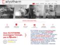 Détails : ELYOTHERM Energies Lyon Thermique