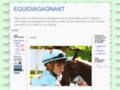 Détails : equidiagagnant
