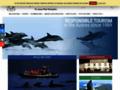 Observer les dauphins et baleines de l'Atlantique - Espaço Talassa