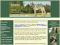 Site Détails : Coach canin formée à Woodenpark et comportementaliste dans les Landes
