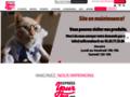 Détails : Express Your Tee - Des centaines de motifs, créez vos T-shirts personnalisés, 4 boutiques en France