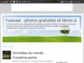 Site #6263 : Photos nature (faune et flore)