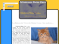 site http://felinderace.free.fr