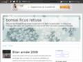 ficusretusa.over-blog.com/