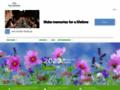 Fleuriste en ligne, livraison fleurs
