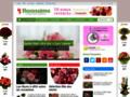 aquarelle fleurs sur www.florassimo.com