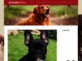 Détails : Frederictillier, amoureux des animaux
