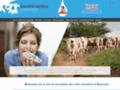 Fromages de Laqueuille - Auvergne