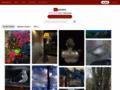 Myart galerie virtuelle