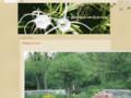 gardeninfrance.blogspot.com/