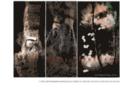 Kafka, Proust, Hitchcock: les 3 Albums