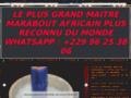 LE PLUS GRAND MAITRE MARABOUT AFRICAIN