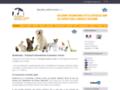 Transport animalier et d'animaux avion à l'international.
