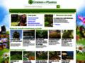 amenagement jardin sur www.graines-et-plantes.com