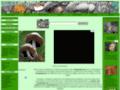 Guide champignon