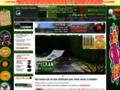 Détails : Un jardin vert sans entretien