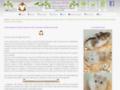 www.hamster-russe.fr
