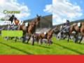 courses chevaux sur hippodrome-courses-chevaux-53-craon.courses-craon.com
