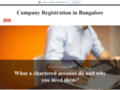 How Chartered Accountant Adds Value to Business?