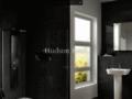 Hudson-Reed