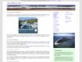 Détails : Guide sur l'île d'Oléron