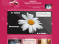 cliquez pour visiter le site