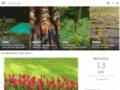 Détails : Conseil en aménagement du jardin