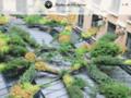 Détails : Jardins de Babylone: mur végétal, design végétal
