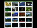 Voir la fiche détaillée : Guide de jeux en ligne