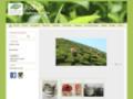 Jodhar - Thé de Chine et d'Inde
