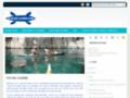 Kayak Cassis