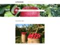Détails : La Pommeraie Castelnau de Lévis - Vente à la Ferme Fruits et Légumes