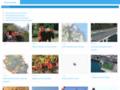 Détails :  Informations et guide touristique la Réunion