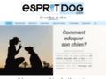 L'academy des chiens, �ducateur canin sur Paris, IDF