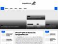 Détails : Comment débuter le référencement d'un site web ?
