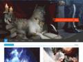 Détails : Les dragons au-delà des légendes