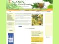 Les Tisanes - La santé par les plantes