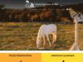 Détails : Equitation à Vuadens (Fribourg)