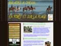 Capture du site http://www.letrier-roncois.com