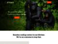 bonobo sur www.lolayabonobo.org