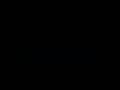 Détails : Maison de la Mousse : spécialiste de la mousse Orléans (45)