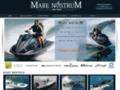 Détails : Occasion bateau sportifs et élégants